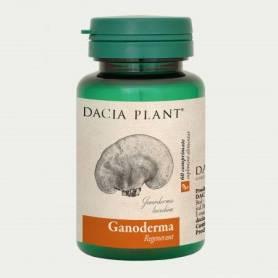 Ganoderma Lucidum 405mg 60cp - Dacia Plant
