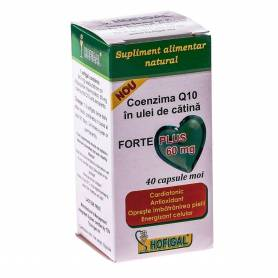 Coenzima Q10 Forte Plus 60mg 40cps - Hofigal