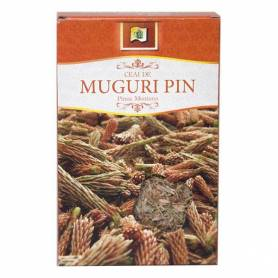 Ceai Pin - muguri - 50g - Stef Mar