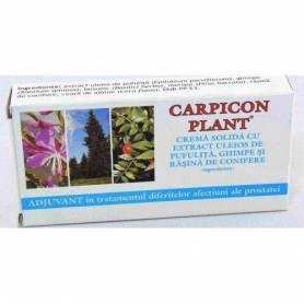 Carpicon Plant supozitoare cu extract uleios de pufulita, ghimpe si rasina de conifere 1g 10buc - ELZIN PLANT