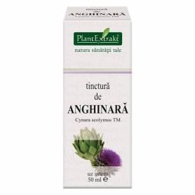 Tinctura de ANGHINARA - 50ml - PlantExtrakt
