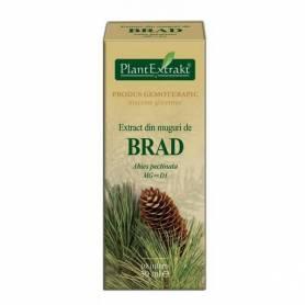 BRAD - muguri - gemoderivat - 50ml - PlantExtrakt