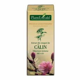 CALIN - muguri - gemoderivat - 50ml - PlantExtrakt