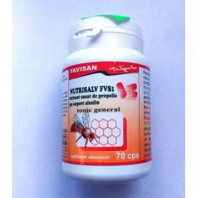 Nutrisalv FVS1 Extract de propolis pe suport alcalin 70cps Favisan