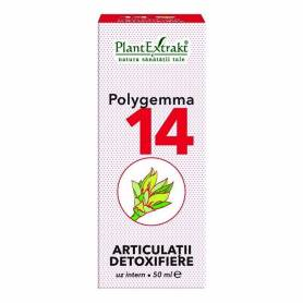 Polygemma 14 - Articulatii detoxifiere 50ml Plantextrakt