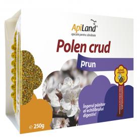 Polen CRUD de Prun 250g - Apiland