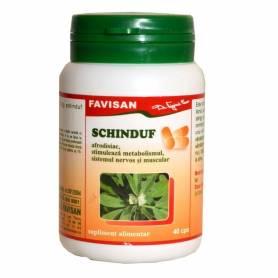 Schinduf 300mg 40cps - Favisan