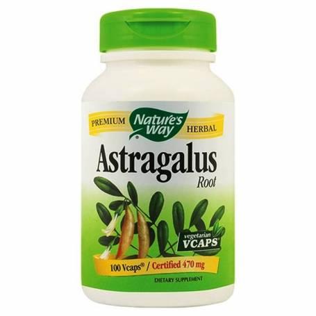 ASTRAGALUS 470mg 100cps veg - Natures Way - Secom
