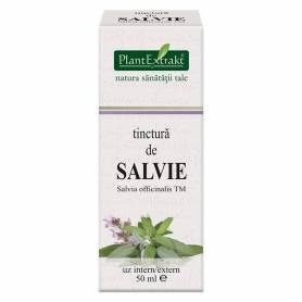 Tinctura de SALVIE - 50ml - PlantExtrakt
