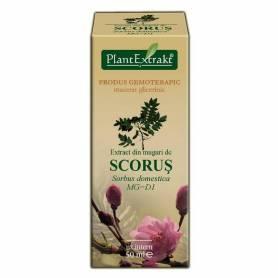 SCORUS - muguri - gemoderivat  - 50ml - PlantExtrakt