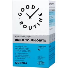 Build-Your-Joints - 30cps, Good Routine, Secom