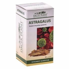 Astragalus 60cps - Dacia Plant