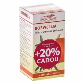 Boswellia 60cps - Dacia Plant
