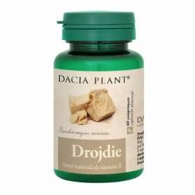 Drojdie 60cps - Dacia Plant