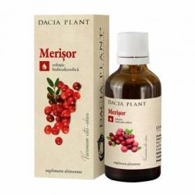 Tinctura Merisor 50ml - Dacia Plant