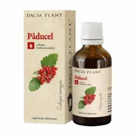 Tinctura de Paducel 50ml - Dacia Plant
