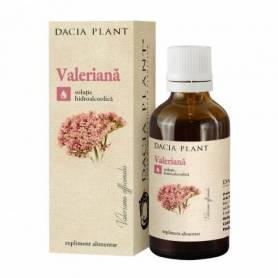 Tinctura de Valeriana 50ml - Dacia Plant