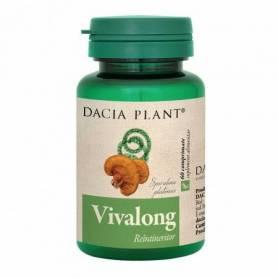 Vivalong 60cps - Dacia Plant