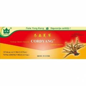 CORDYANG - Cordyceps sinensis extract 2000mg - 10 fiole a 10 ml - Yong Kang