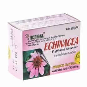Echinacea 40cps - Hofigal