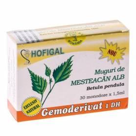 Gemoderivat Muguri Mesteacan Alb 30mdz - Hofigal