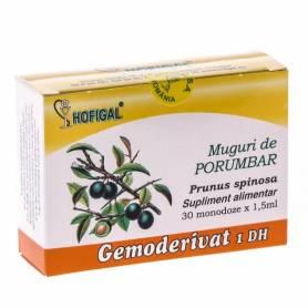 Gemoderivat Muguri Porumbar 30mdz - Hofigal