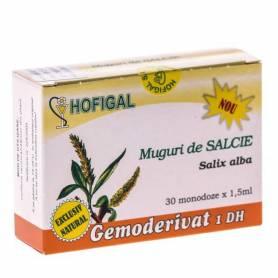 Gemoderivat Muguri Salcie 30mdz - Hofigal