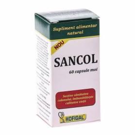 Sancol 60cps - Hofigal