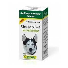 Ulei de catina uz veterinar 60cps - Hofigal