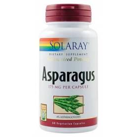 Asparagus (Sparanghel) 60tb - Solary