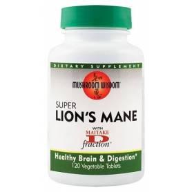 Super Lion's Mane 120tb - Mushroom Wisdom Inc - Secom