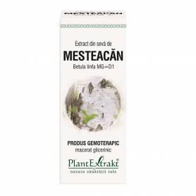 SEVA DE MESTEACAN - gemoderivat - 50ml - PlantExtrakt
