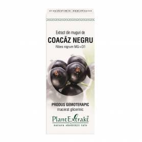Coacaz Negru - muguri - gemoderivat - 50 ml - PlantExtrakt