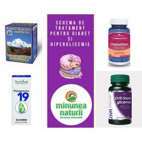 Schema pentru diabet si hiperglicemie