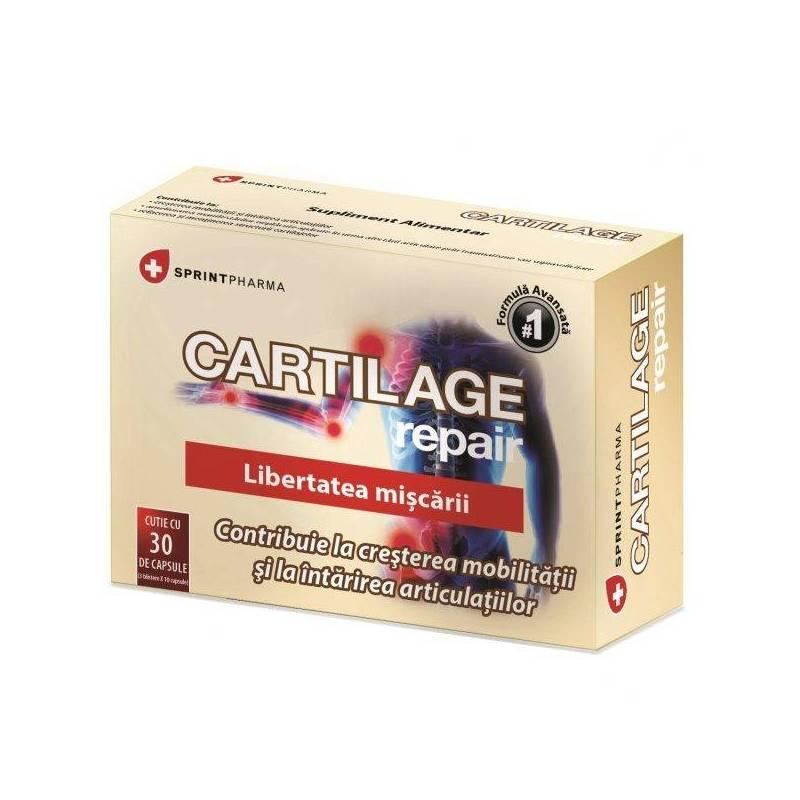 cartilage repair pareri