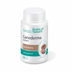 Ganoderma Lucidum extract 500mg 30cps - Rotta Natura