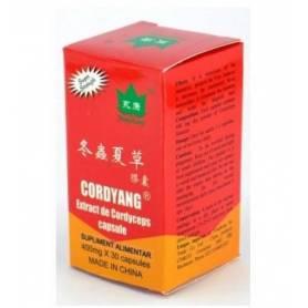 CORDYANG - Cordyceps sinensis extract 400mg - 30cps - Yong Kang