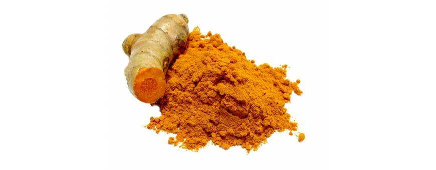 Turmeric - curcuma - curcumin, antioxidant - antiinflamator natural