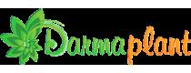 Darmaplant - Damar