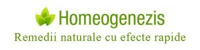 Homeogenezis